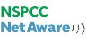 Image result for nspcc net aware logo